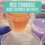 Red Cabbage Kids Science Activity
