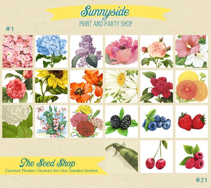 seedshop